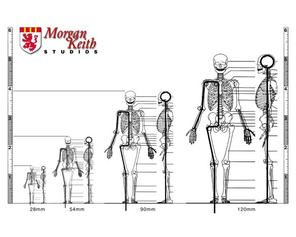Morgan Keith armature diagram