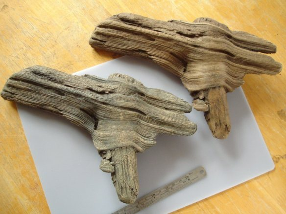 Thames driftwood hollow casts