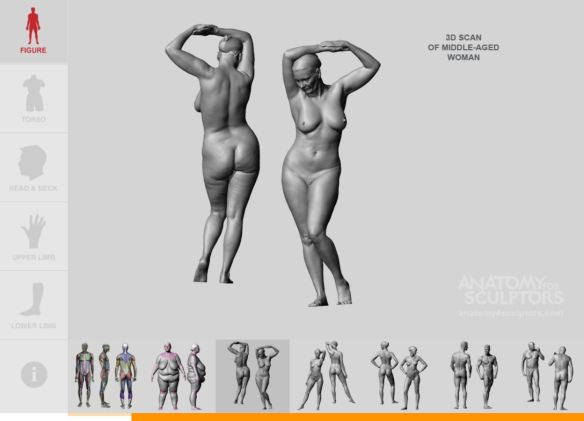 Anatomy For Sculptors '3D scan of middle-aged woman'