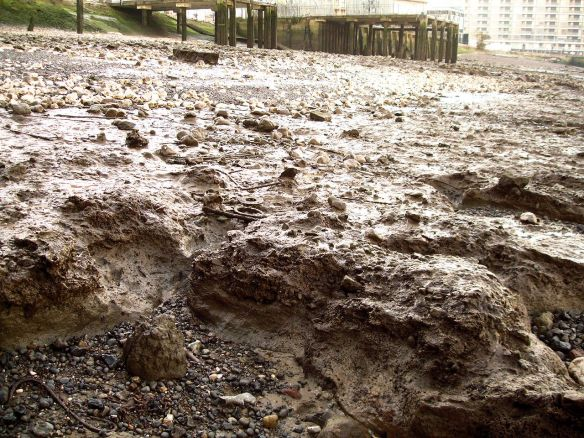 'Historical mud' type 2, Thames Foreshore, Greenwich Peninsula