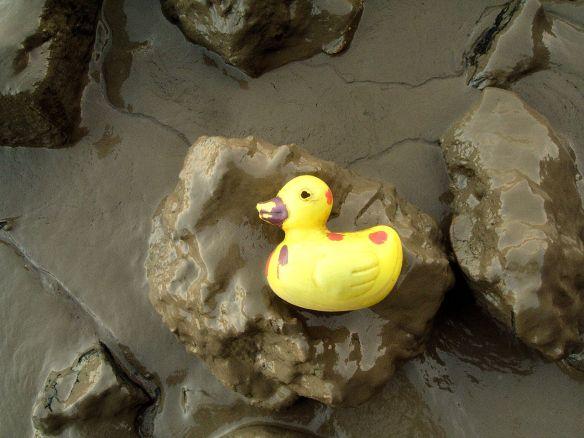 Plastic duck, Thames foreshore 2017