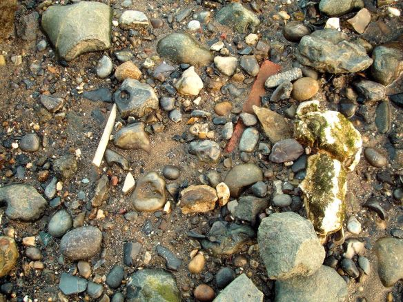 'Historical mud' type 3, Thames Foreshore, Greenwich
