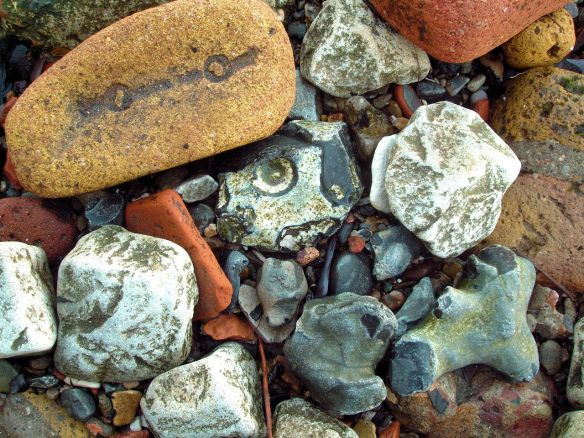 brick and flint forms, Thames Foreshore, Rotherhithe