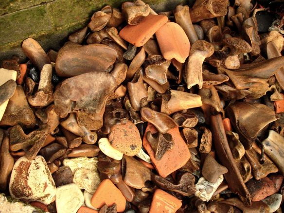 Animal bones against the river wall, Thames Foreshore, Wapping